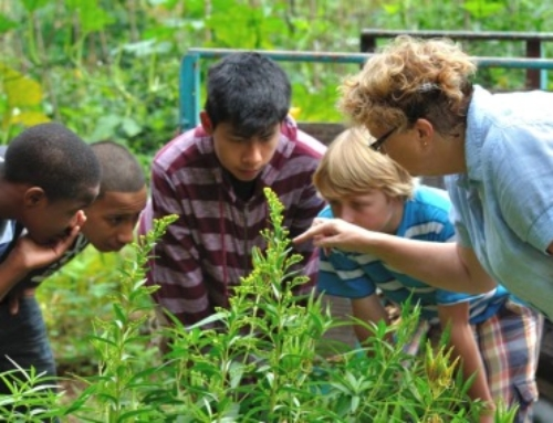News from the School Garden Resource Center