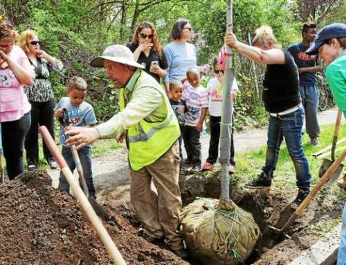 New Haven Register: Common Ground High School in New Haven honors slain student through tree plantings, educational wetlands