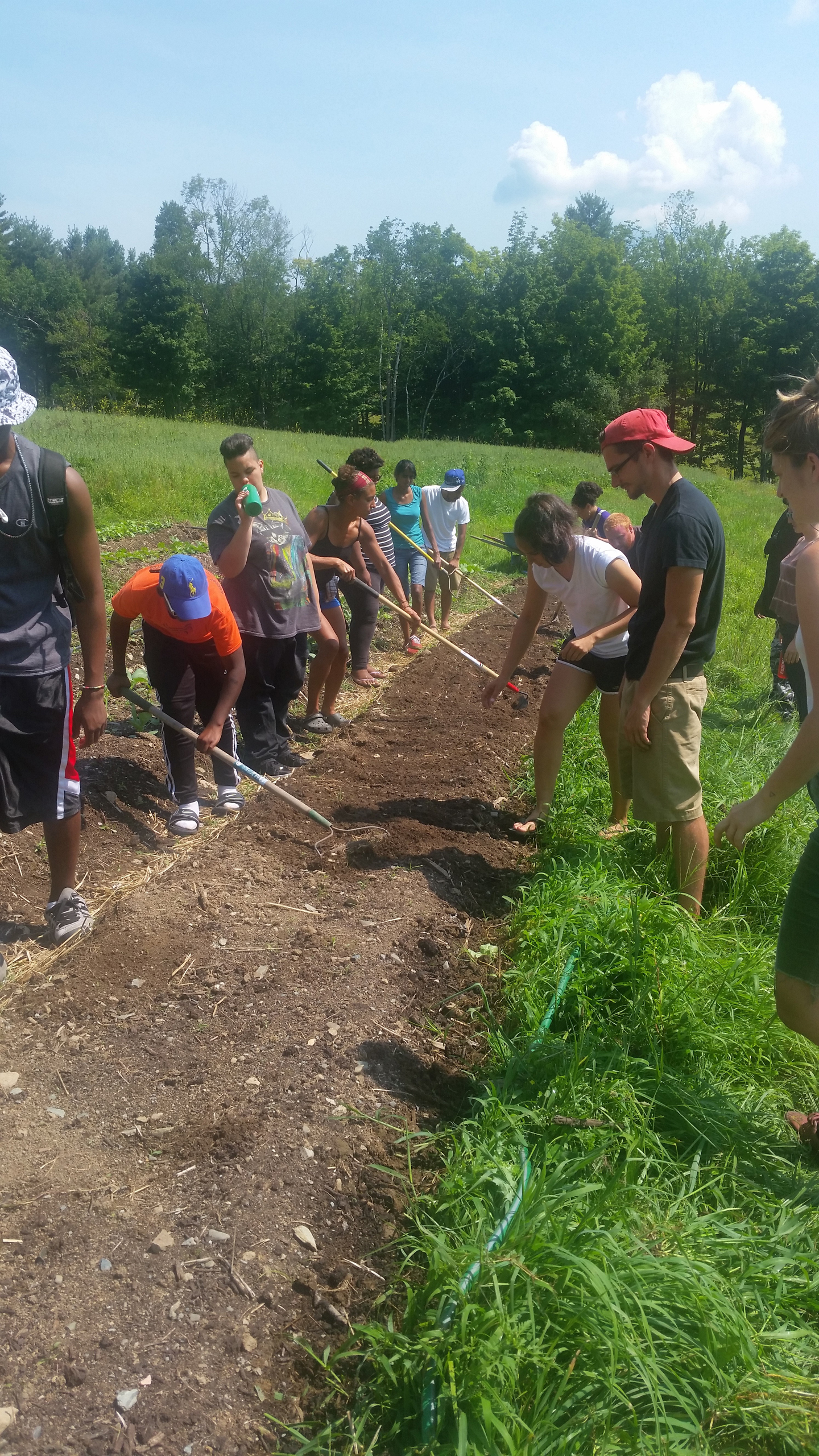A group of young farmers work the fields at Soul Fire Farm.