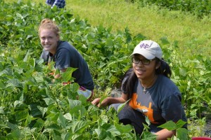 Two high school students work with plants on a farm.
