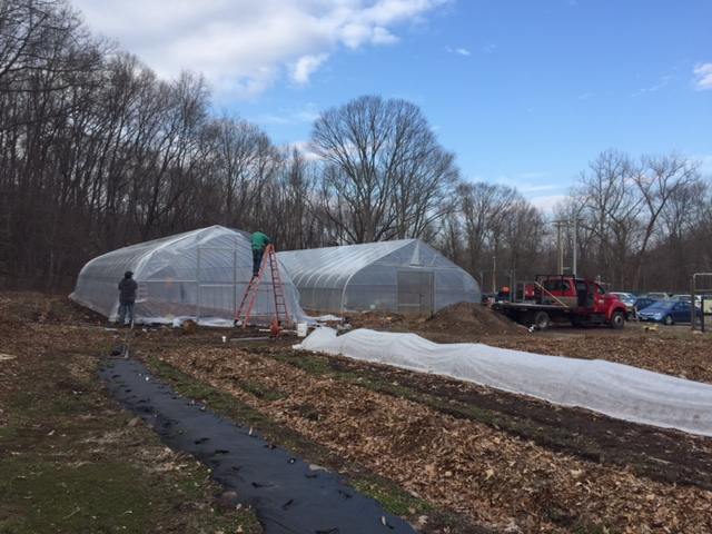 A new high tunnel on the farm at Common Ground