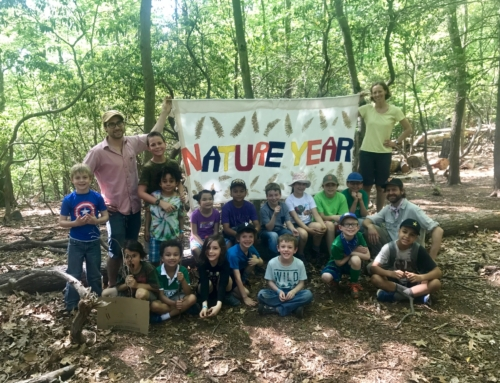 Common Ground seeks Forest School Teacher in the NatureYear Program