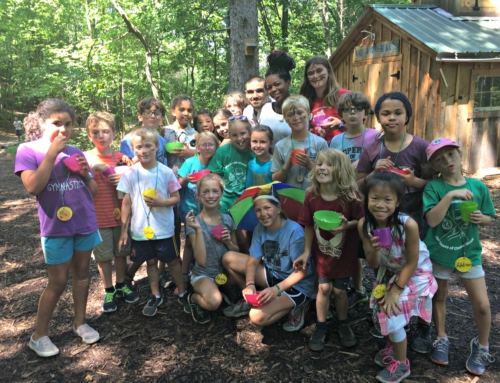 Common Ground Seeks Camp Teachers/Environmental Educators