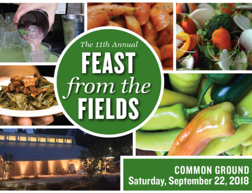 FEAST your eyes on this! CG was on News 8 talking Feast from the Fields