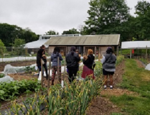 Fall Farm and Garden Institute is Saturday, November 10 at Common Ground