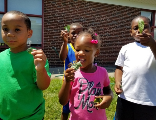 The best of…the CT Schoolyards Program 2018
